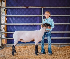 Kadynce Hedges,1st Red Sheep Floral 4-H, Winfield