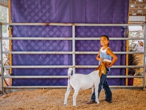 Melarie Clark,2nd Red Meat Goat Udall 4-H, Mulvane