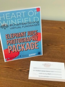 Elephant Juice Photography Package