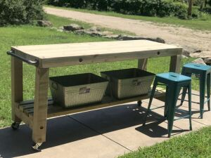 Backyard Bar Package - Perfect for your Deck or Patio!