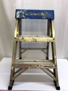Werner 2' Metal Step Ladder